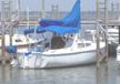 1981 Catalina 22 sailboat