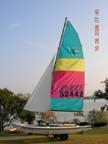 1987 Hobie 14 sailboat