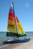 1981 Hobie 18 sailboat
