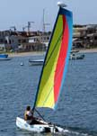 Hobie Bravo sailboats